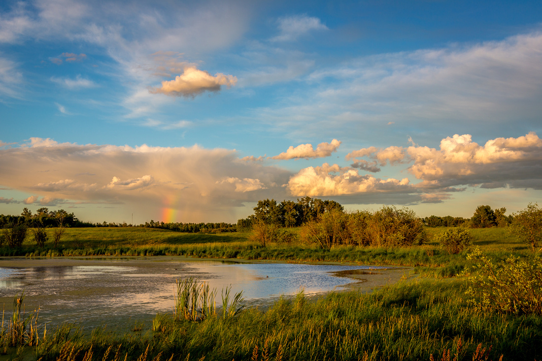 Ranbow Over a Pond